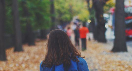 Safeguarding students on the school run image